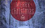 Merry Christmas (17547)