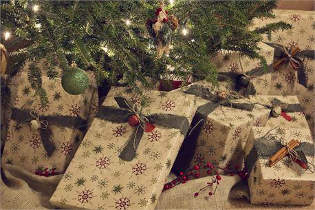 Christmas presents under tree (17642)