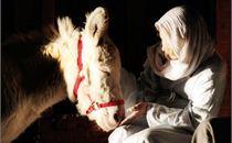 mary.nativity
