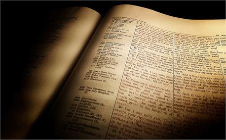 Light of Scripture (18227)