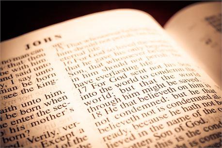 Scripture Photos (19737)