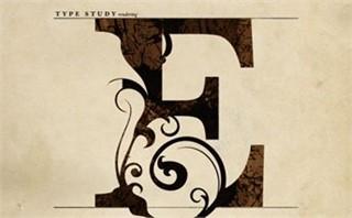 Type Study E