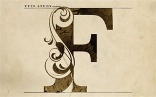 Type Study F