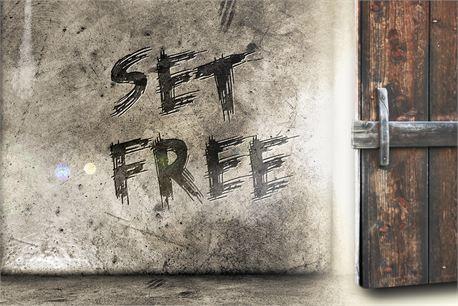Set Free (20299)