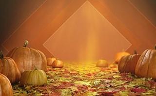 Fall Pumpkins - Welcome & BG