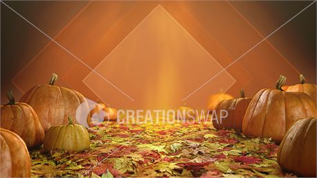Fall Pumpkins - Welcome & BG (21489)