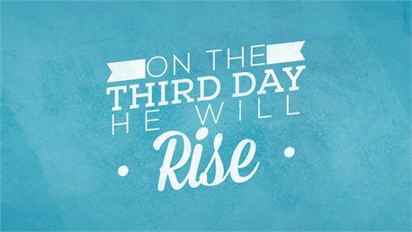 Rise (22814)