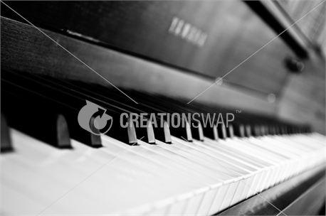 Piano keys (23178)