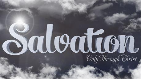 Salvation (23611)
