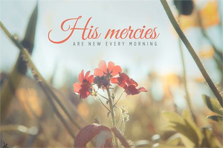 His mercies are new  (24440)