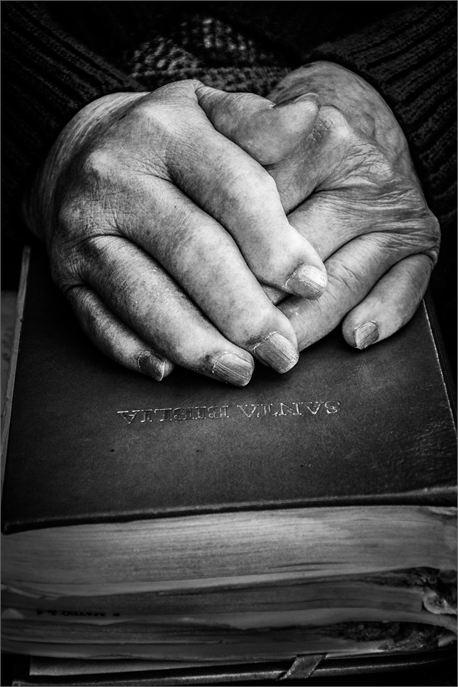Old Hands (24607)
