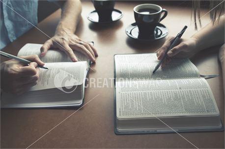 Highlighting Bibles (24883)