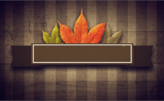 Fall Banner Background