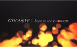 Holy Fire Goodbye (25527)