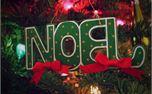 Noel Ornament (25829)
