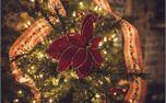 Christmas Tree Decorations (26463)