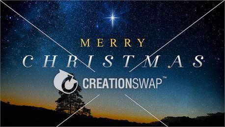 Christmas Star Night (27170)