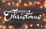 Christmas Lights Bundle (27187)