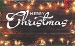 Christmas Lights Bundle (27188)