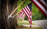 American Flags (29128)