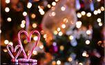 Christmas Time Love (29133)