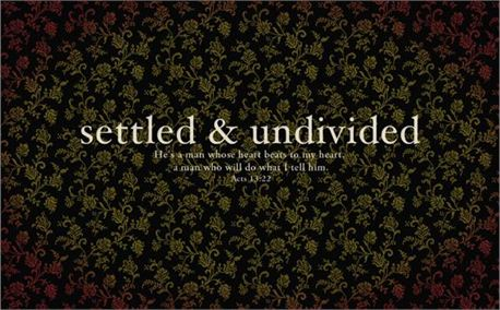 Settled and Undivided (3381)