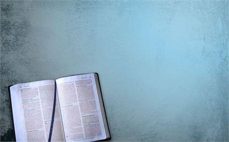 Open Bible (3628)