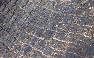 Burnt Wood