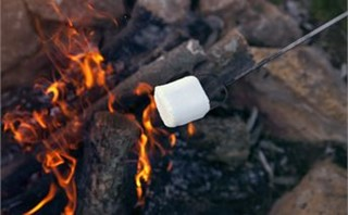 Fire & Marshmallow