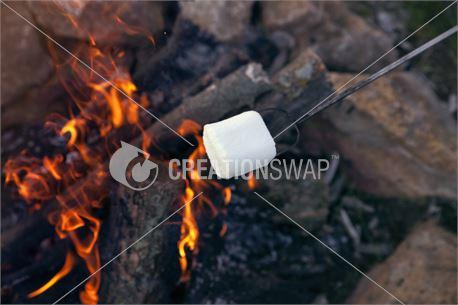 Fire & Marshmallow (30033)
