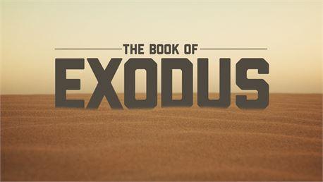 The Book of Exodus (30479)