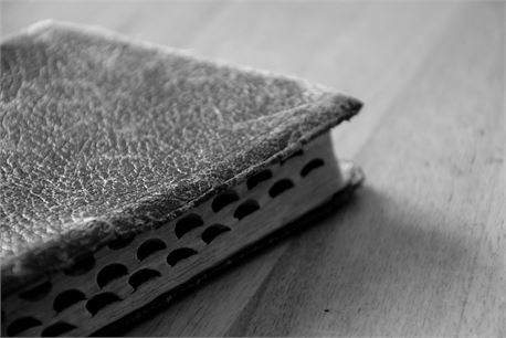 Old Bible (31073)