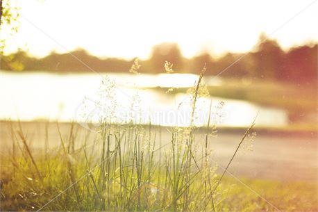 Summer Lake (31260)