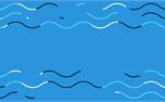 Summer Waves: Loop 2 (31506)