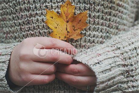 Fall (32254)