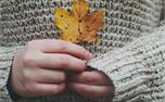 Fall (32272)