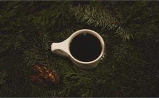 Pine Coffee