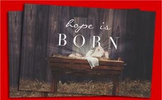 Christmas Manger Postcard