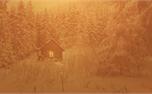 Winter Colors: Loop 4 (34256)