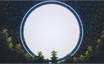 New Year Trees: Loop 1 (34464)