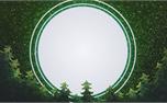 New Year Trees: Loop 4 (34467)