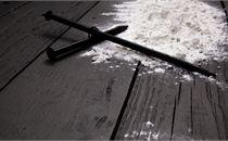 Lenten Ash 6