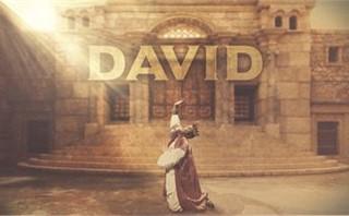 King David Slides