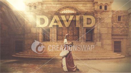 King David Slides (35441)