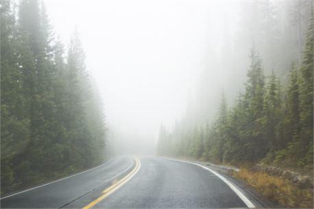 Foggy road (36251)