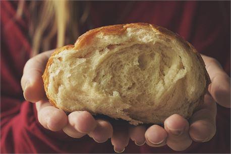Bread (37252)