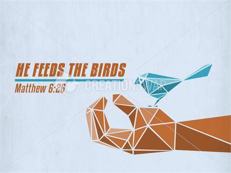 He Feeds the Birds (37436)