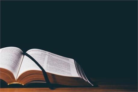 Open bible (37784)