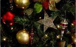 Christmas tree star background (38422)