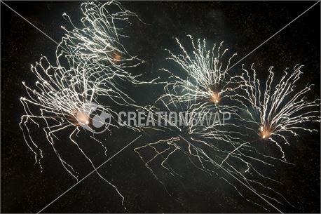 Spider Fireworks (38668)